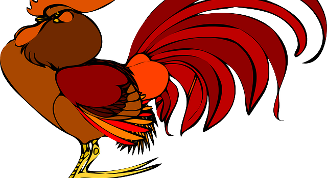 rooster-48030_640